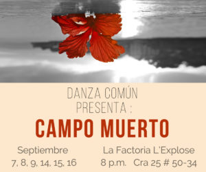 Danza Común Premion Nacional de Danza Colombia
