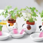 Estas macetas mantienen las plantas regadas todo el tiempo